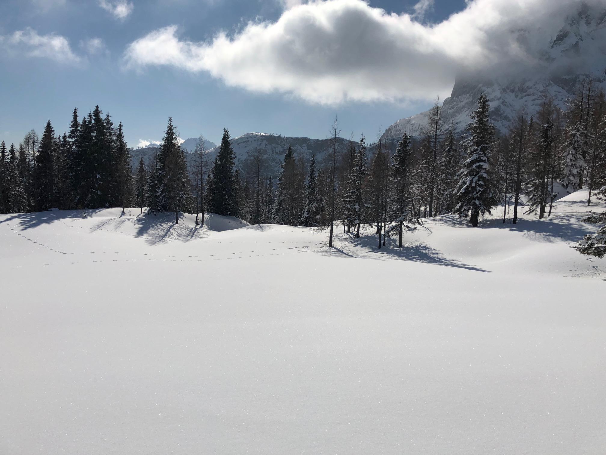 Skitour -  shop-bergsport -